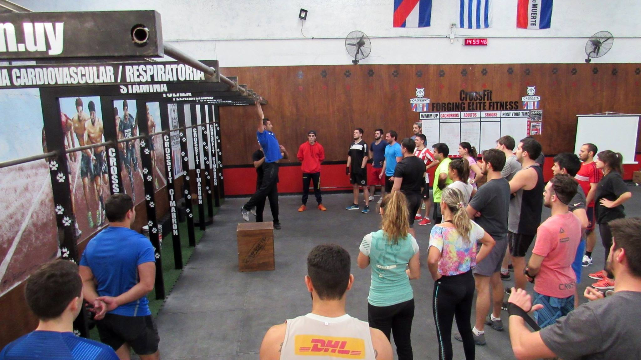 workshops-acaradeperro-crossfit-1